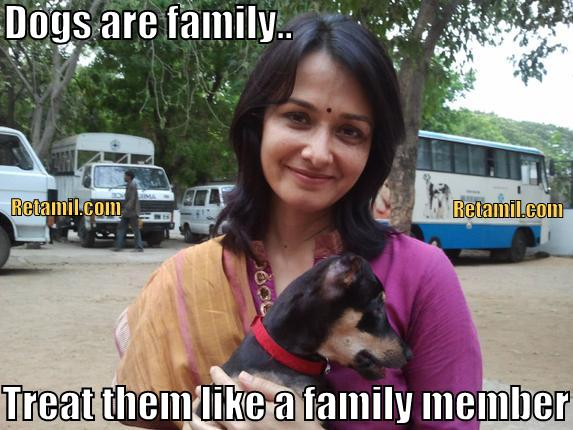 Malaysian Indian households, dogs are family